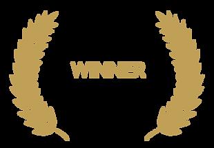 Award-Winning-PNG-Transparent-Image.png