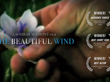 """The Beautiful Wind"" Wins Local to International Acclaim As It Becomes An Audience Favorite"