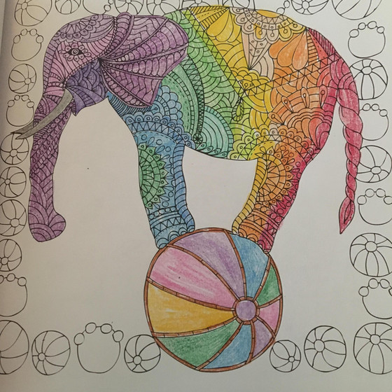 """""""Bound Elephant"""" What Chains from the Past are Holding You Back??"""