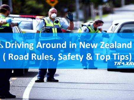 Driving Around in New Zealand (Road Rules, Safety & Top Tips)