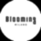 flowerbox-blooming-milano-03.png
