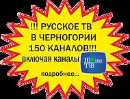 Русское телевидение в Черногории