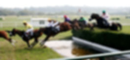website Steeplechase_1257926029.jpg