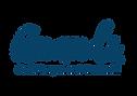 Anandi-Logo-2.png