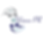 logo-wavespr.png
