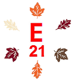 Ensignfleet21f.png