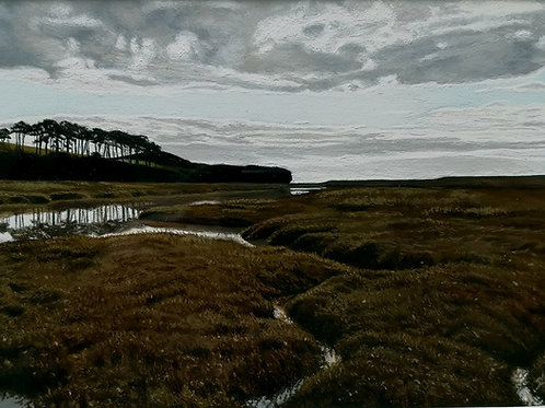 Estuary Moods 2021
