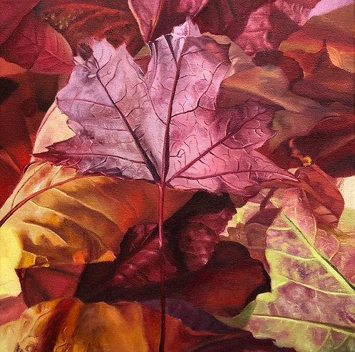 Red Leaf II