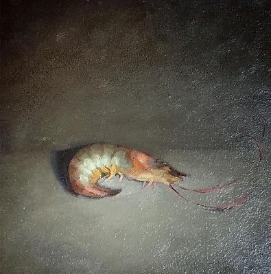 Shrimp-study.jpg