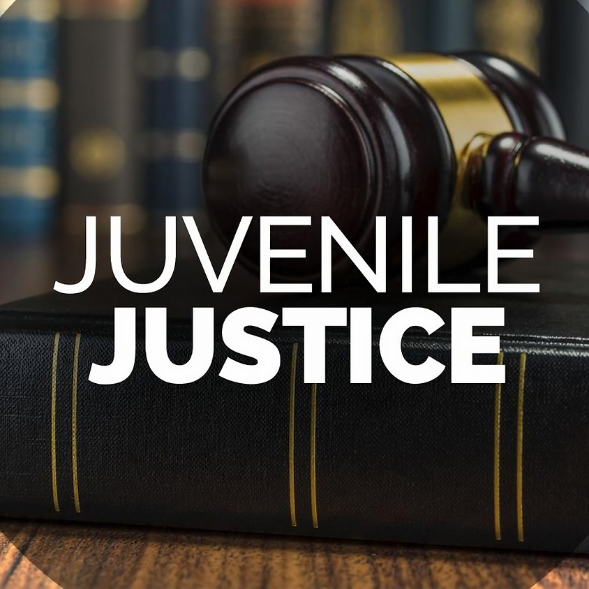 Juvenile Justice Seminar