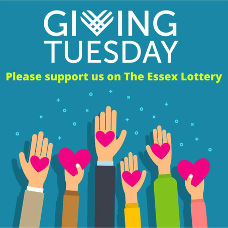 Support SECE Mind by entering The Essex Lottery!