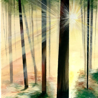 Forest Sunbeam