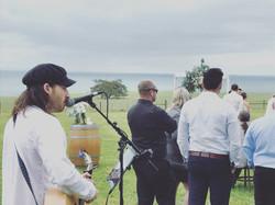 Emslie Wedding, Curlewis