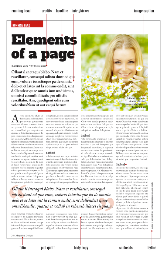 magazine-design-page-elements.png