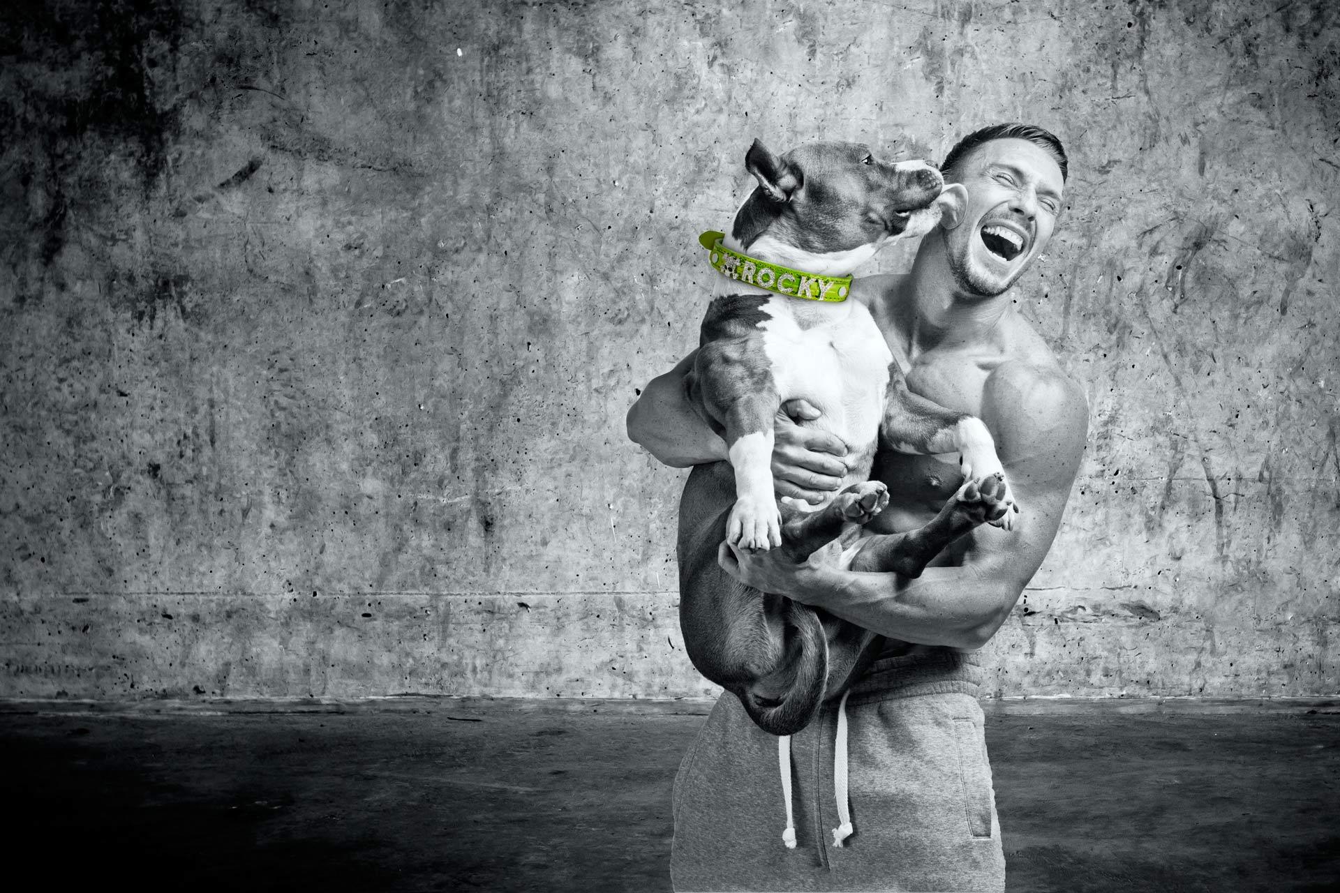 Training mit Hund