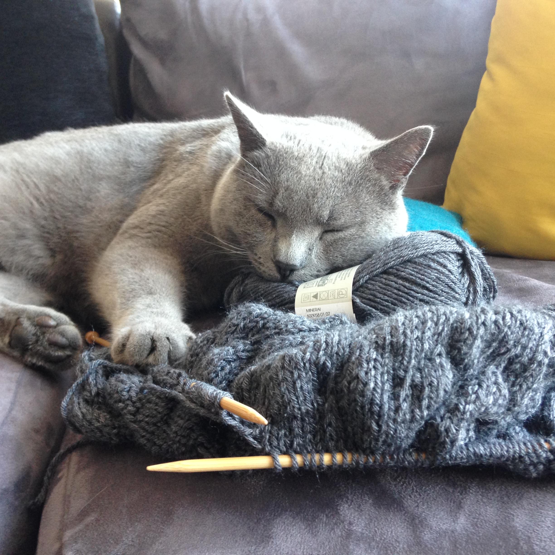 tricot classique