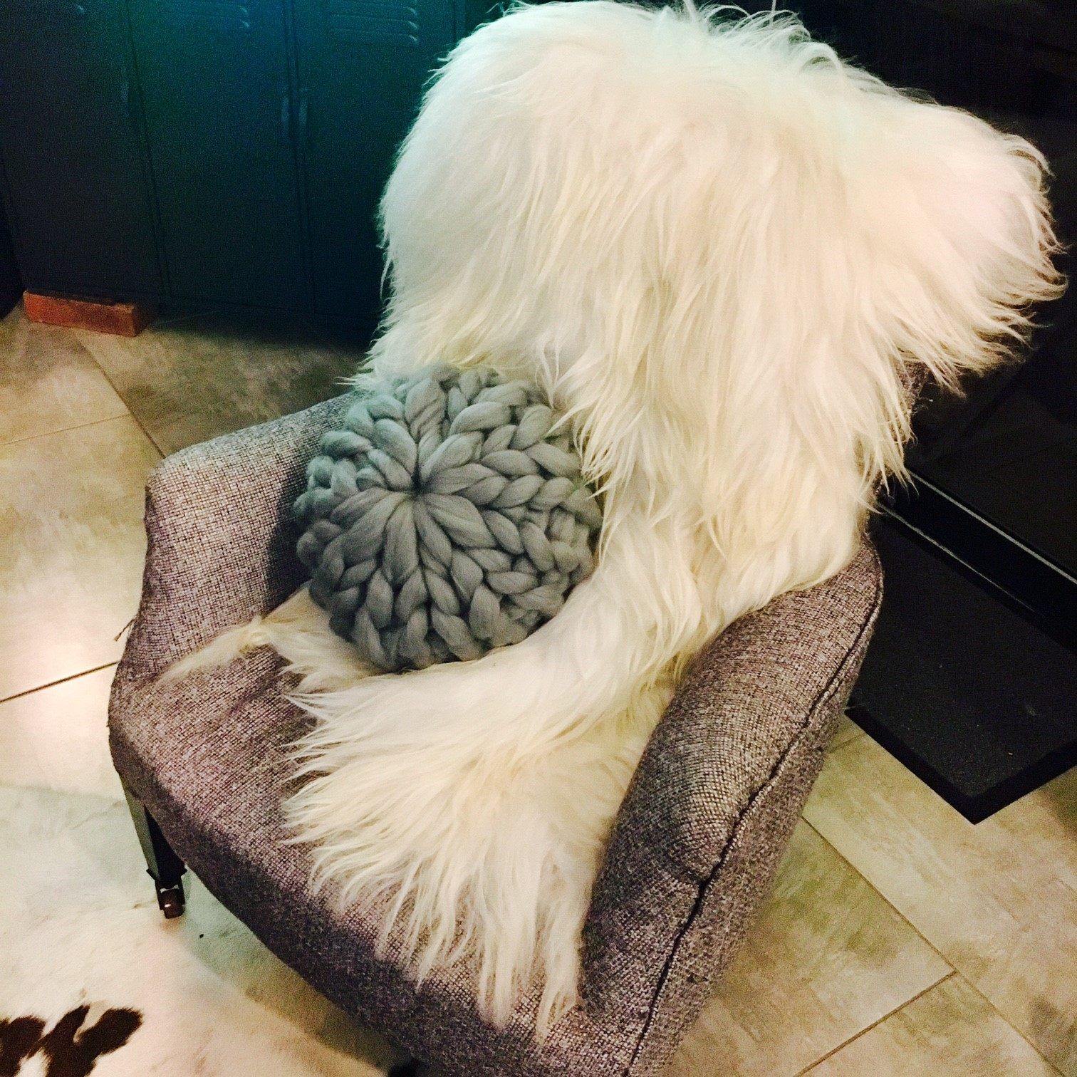 coussin design rond