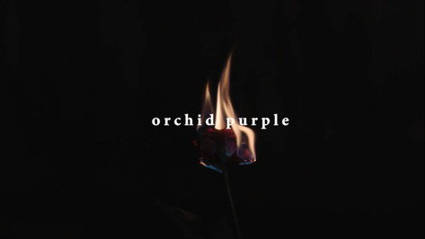[Offical M/V] 오키드 퍼플 (Orchid Purple) 'Want Me Bad'