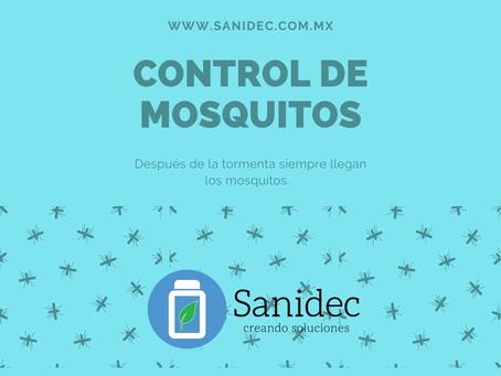 Fumigacion contra mosquitos Merida