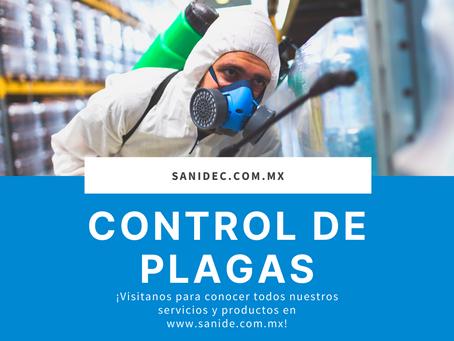 Control de Plagas Merida Yucatan