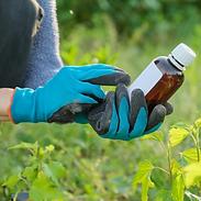 Venta de Productos para control de plagas, de todo para las plagas, quimicos de fumigacion, pesticidas, insecticidas, rodenticidas, fungicidas, acaricidas, piretroides, carbamatos, neonicotinoides, organofosfosforados, organoclorados, hercibicidas, nematicidas, quimicos para plagas, fumigantes, coadyuvantes, productos veterinarios
