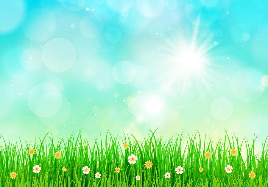 image_spring.jpg