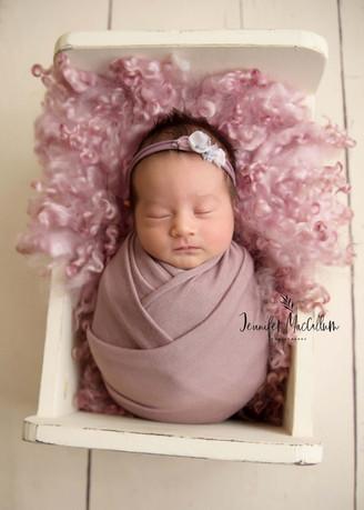 Jennifer MacCallum Whitby Newborn Photog