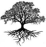 Youth Group Tree.jpg