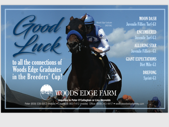 Big Breeders Cup for Woods Edge this year! Best of luck to all.
