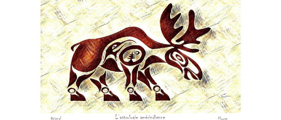 Orignal - Animal totem de naissance amérindien