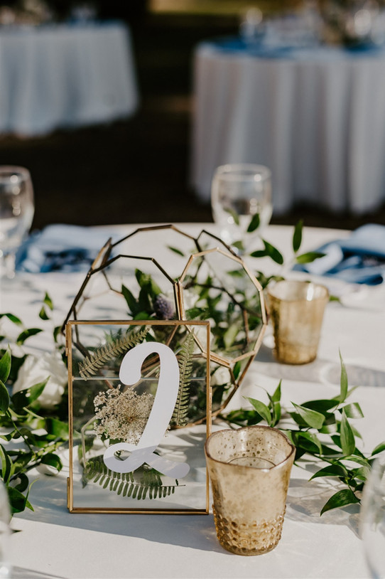 Botanical Table Numbers