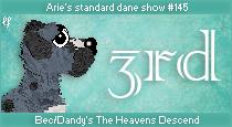 dane-standard145-3rd.png