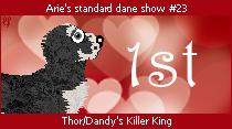 dane-standard23-1st.png