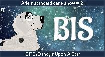 dane-standard121-bis.png