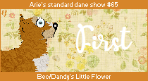 dane-standard65-1st.png