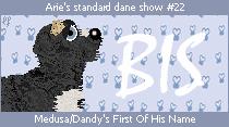 dane-standard22-bis.png