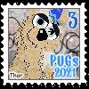 2021PUGs3.png
