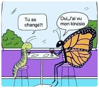 humour papillon.jpg