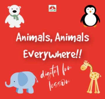 Animals, Animals Everywhere!!