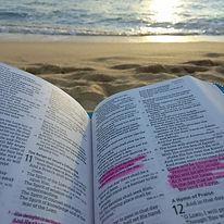 bible (c) S Joshua