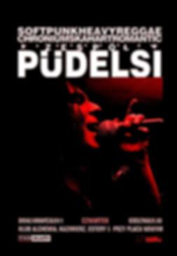 Koncerty zespołu Pudelsi