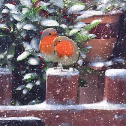 Robins on a Fence