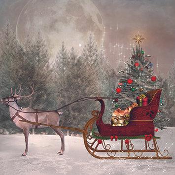 Santa's Magic Sleigh