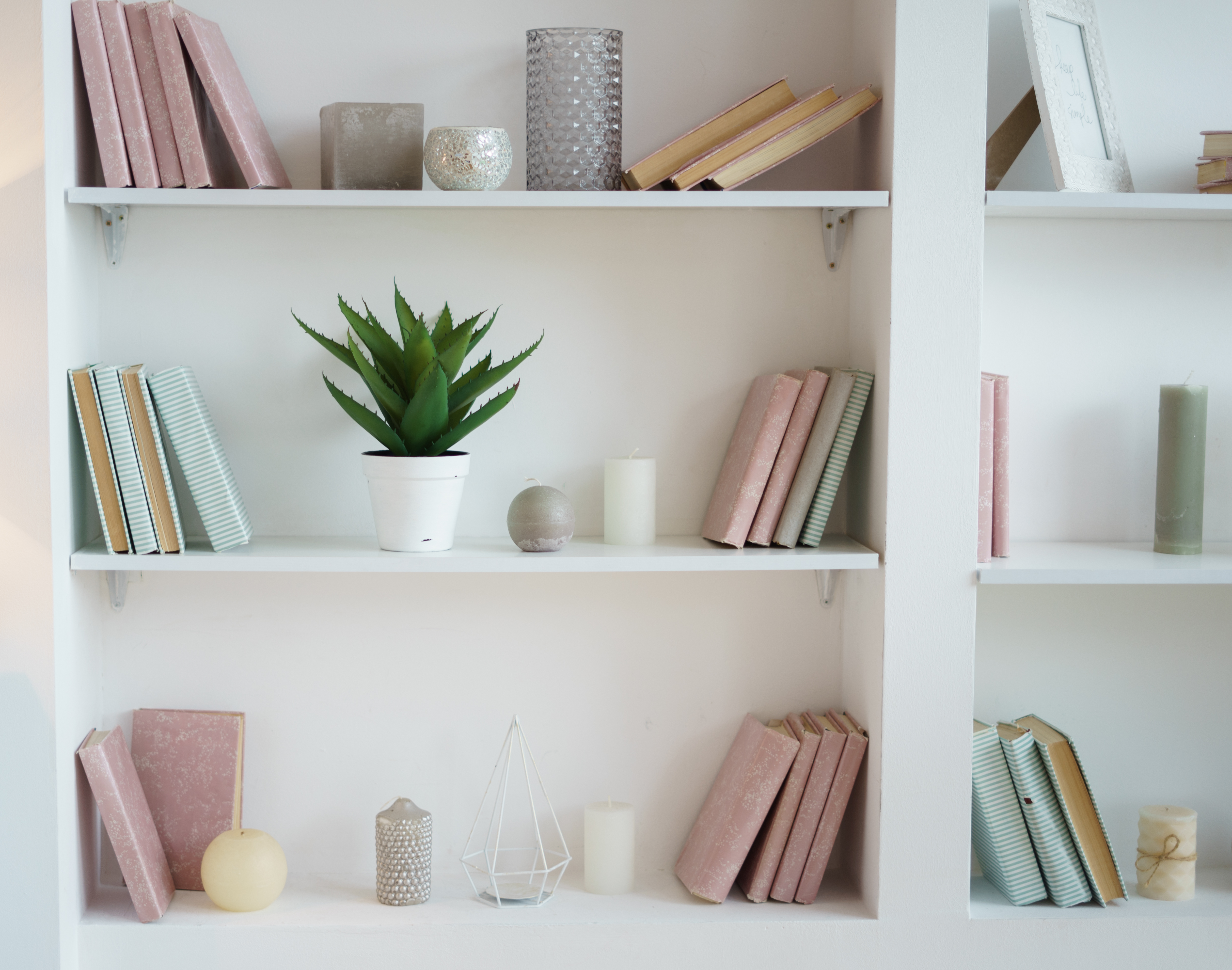 bookcase with pink and blue books. plant
