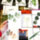 OP LOCATIE:  Botanisch drukken en meer...