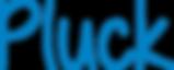 logoPuckProcesBlue.png