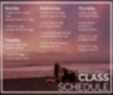 Weekly Schedule 12_8 (1).png