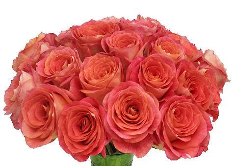 Big_Fun_Coral_Pink_Rose_Bunch-500_a50a0b