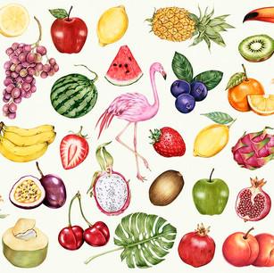 SUPER fruit voor je hond