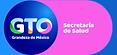 Secretaria de Salud Guanajuato Sak Fundación suicidio prevención